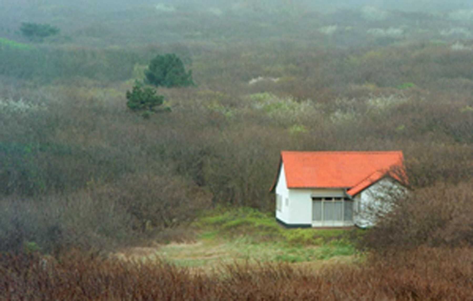 JÖRG SASSE, 8626, 1999