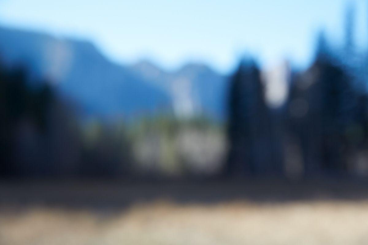 CATHERINE OPIE Untitled #4 (Yosemite Valley), 2015