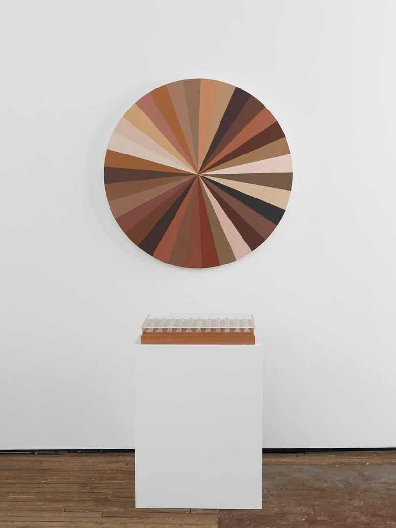 ADRIANA VAREJÃO Polvo Color Wheel VII, 2015