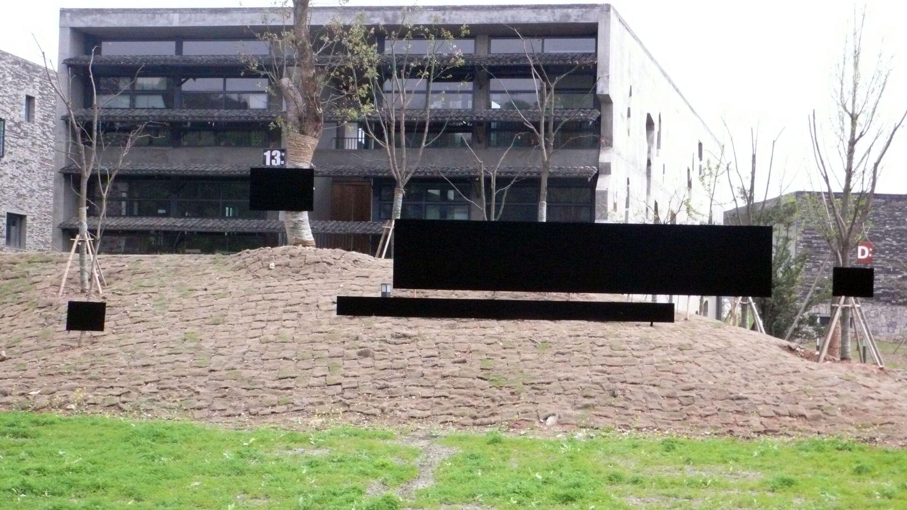 LIU WEI, Dark Matter, 2008