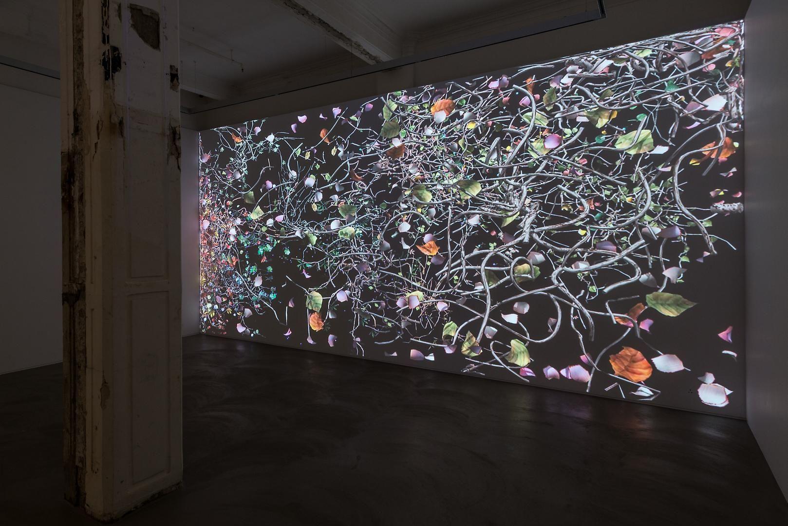 Jennifer Steinkamp: Diaspore Installation view 3