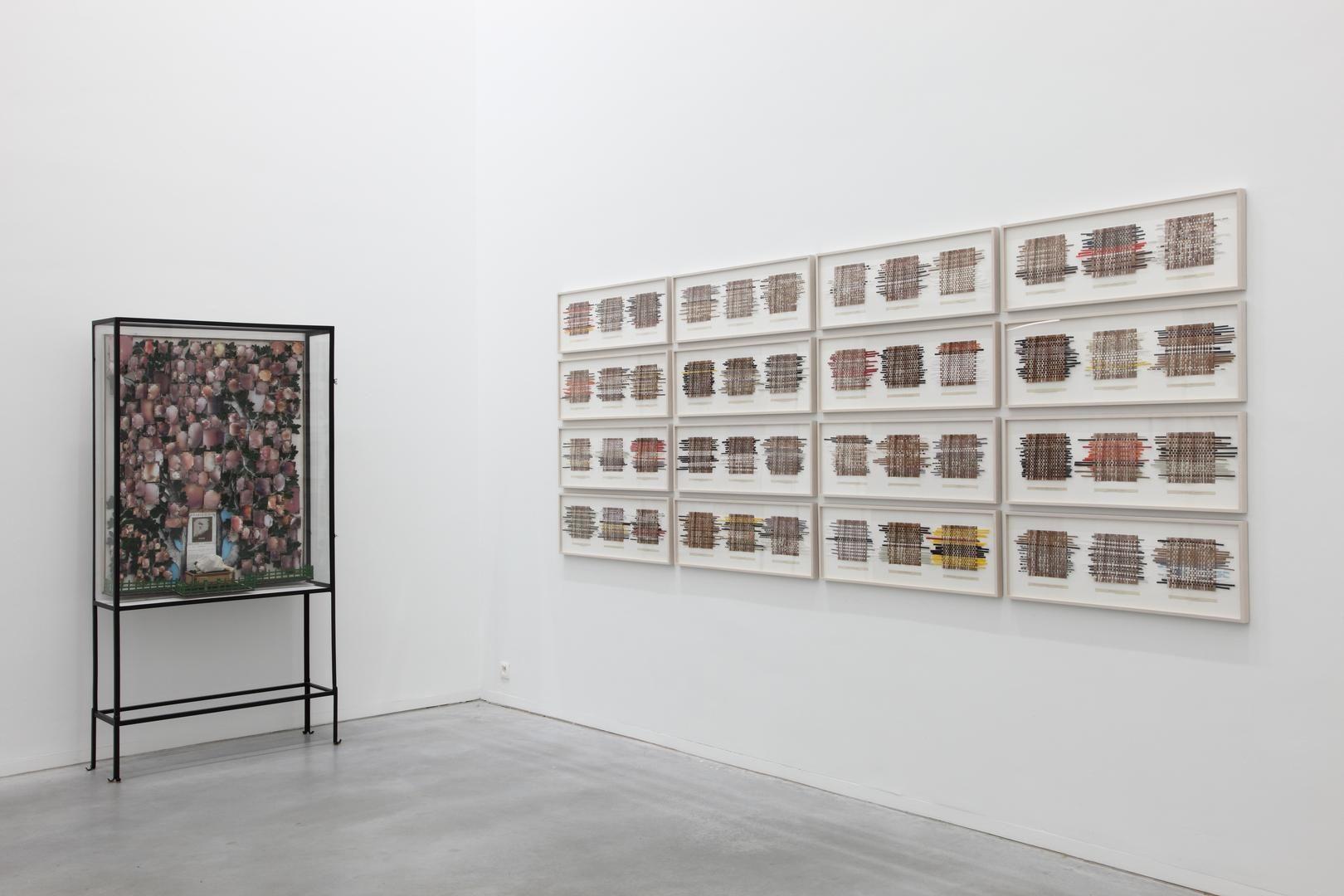 Patrick Van Caeckenbergh: La ruine fructueuse