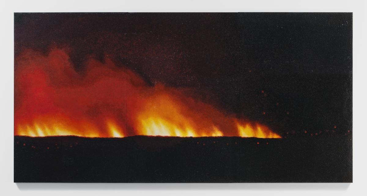 TERESITA FERNÁNDEZ Fire (America) 2, 2016
