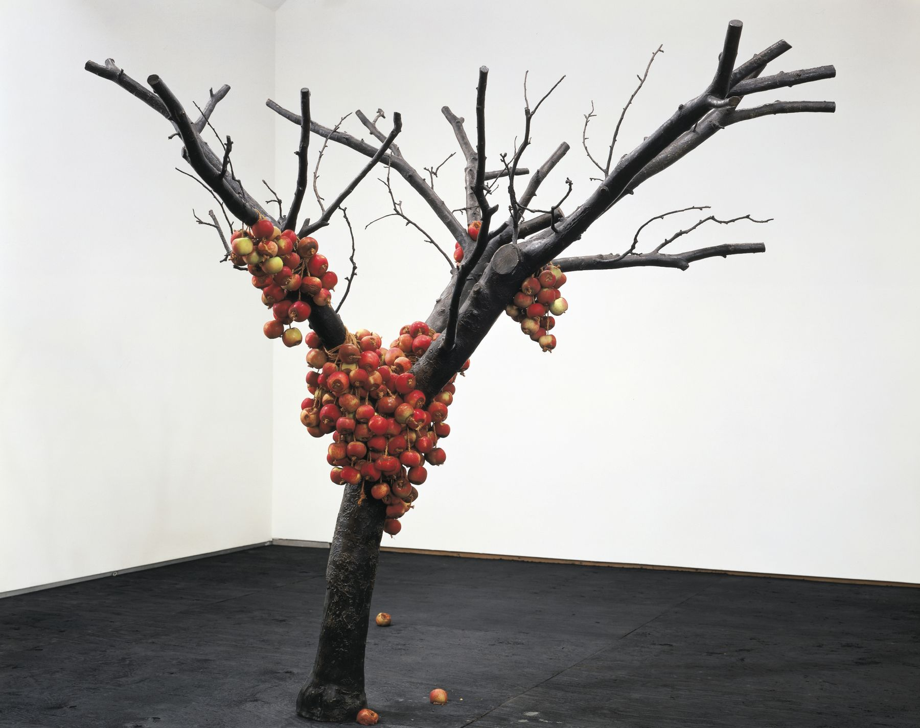 because nothing has changed, 2001, Cast bronze, 250 live apples, twine