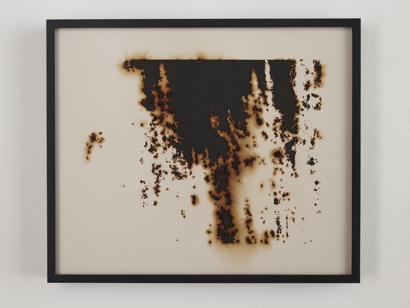 TERESITA FERNÁNDEZ Burned Landscape (America) 1(detail), 2017