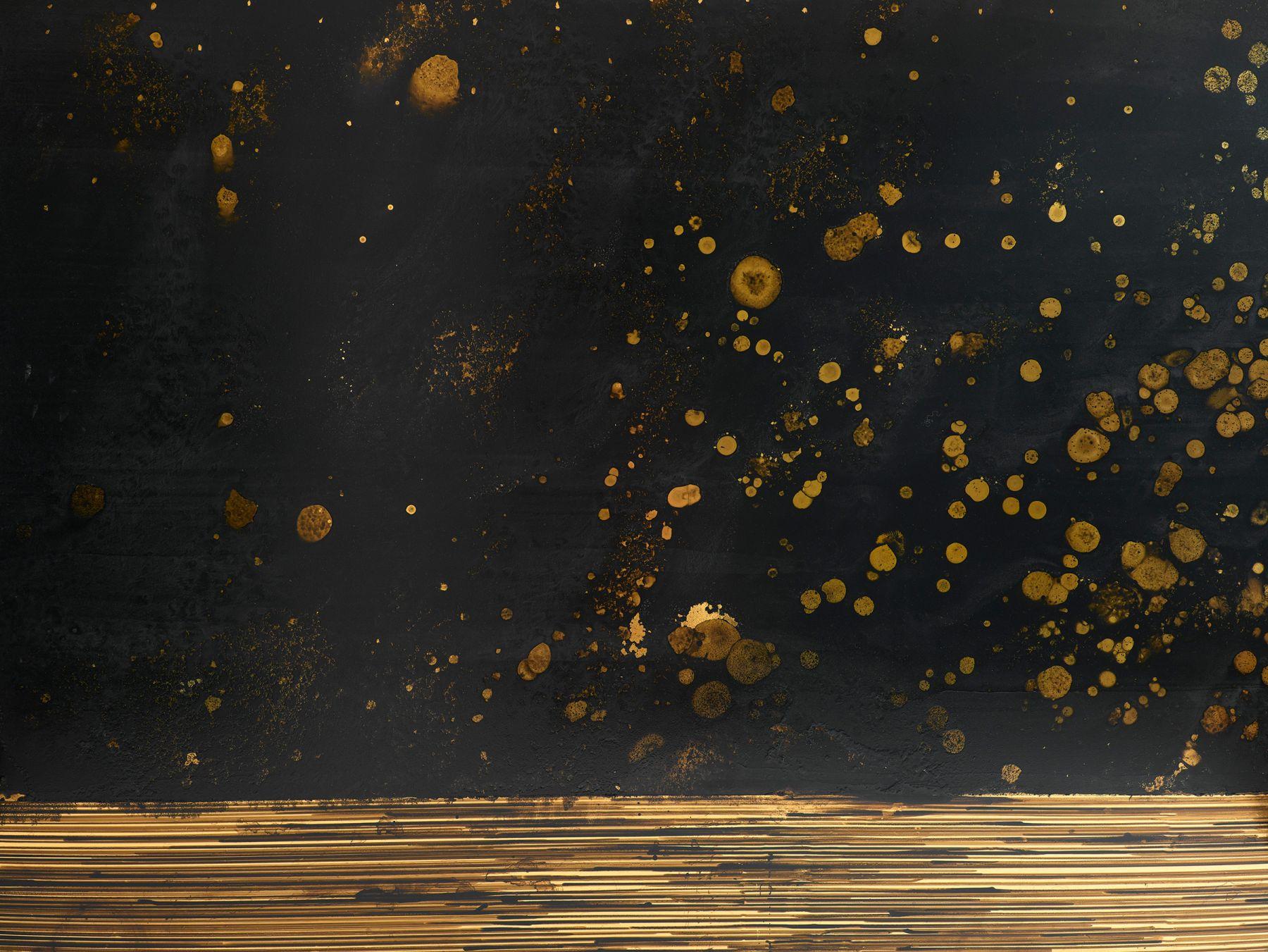 TERESITA FERNÁNDEZ, Golden (Obsidian Scene 2), 2014 (detail)