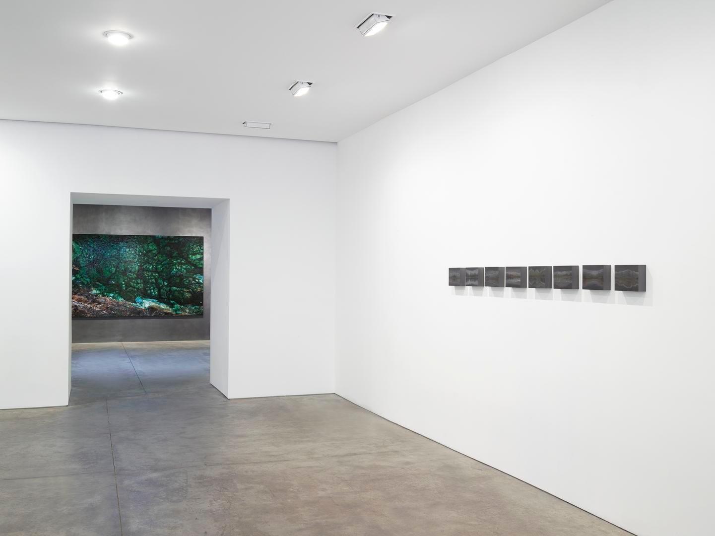 Teresita Fernández Installation View 5