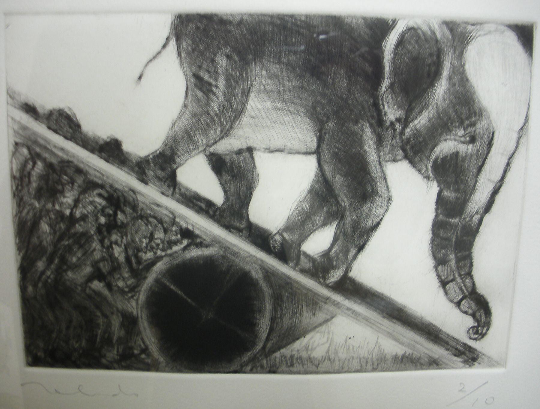 Francisco-Toledo-Muchachos-bajando-al-elefante