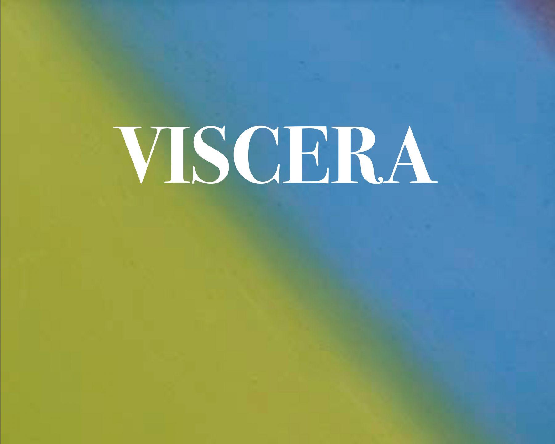 Cover image of Dan Colen: Viscera, published by Venus Over Los Angeles, Los Angeles, 2016