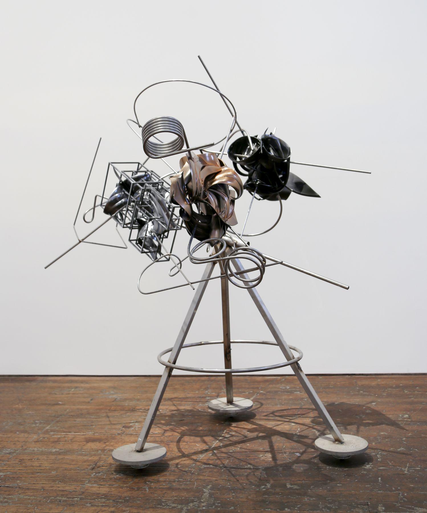Frank Stella,