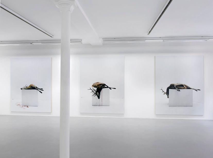 Eric Poitevin– installation view 8