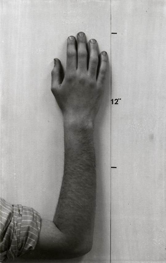 Mel Bochner Actual Size (Hand) [diptych with Actual Size (Face)]