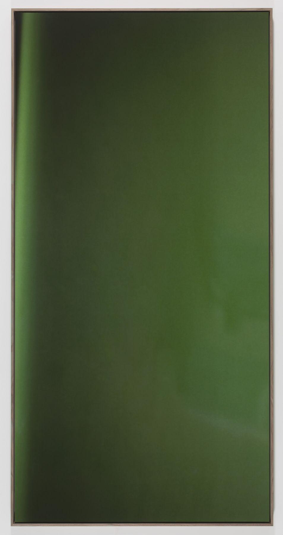 Jan Dibbets New Colorstudies - Moss Green Vertical