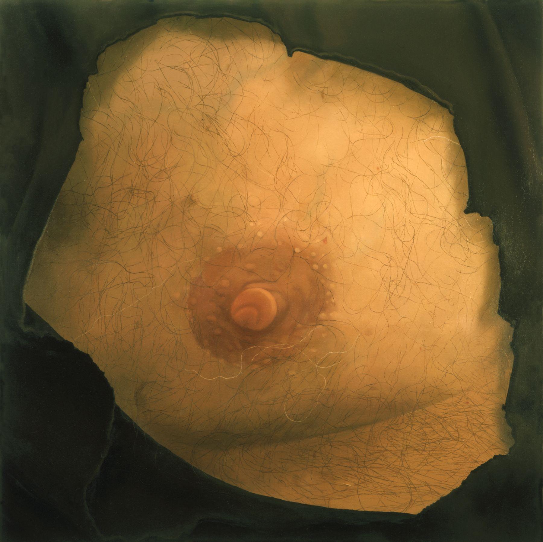 Harry's Nipple, 2003