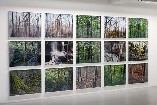 Joseph Bartscherer – installation view 1