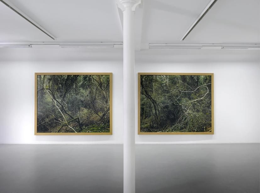 Eric Poitevin– installation view 6