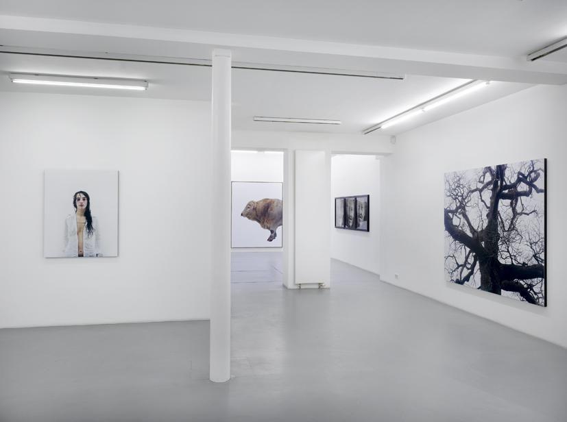 Eric Poitevin – installation view 2