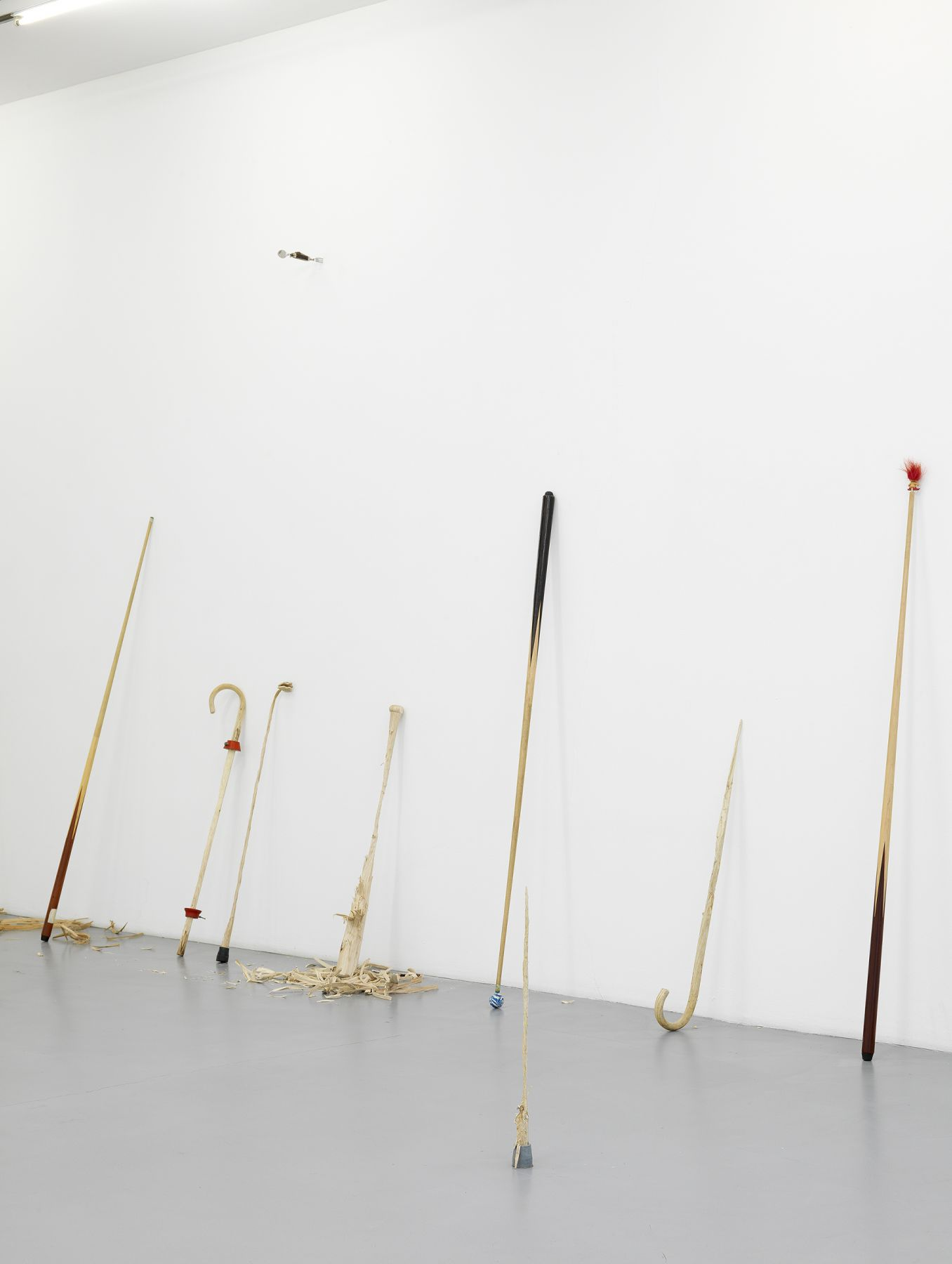 Ania Soliman - David Adamo, Galerie Nelson-Freeman, Paris.