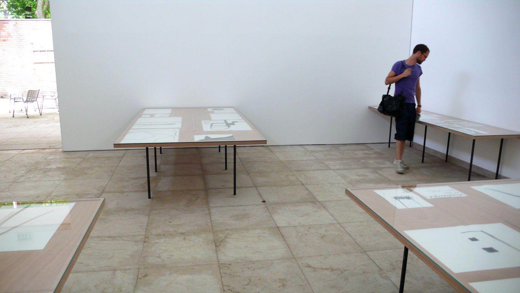 The Swiss Pavilion at the 53rd International Art Exhibition, La Biennale di Venezia