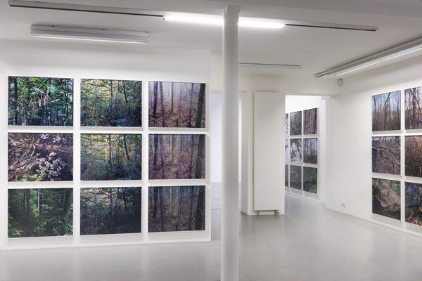 Joseph Bartscherer– installation view 2