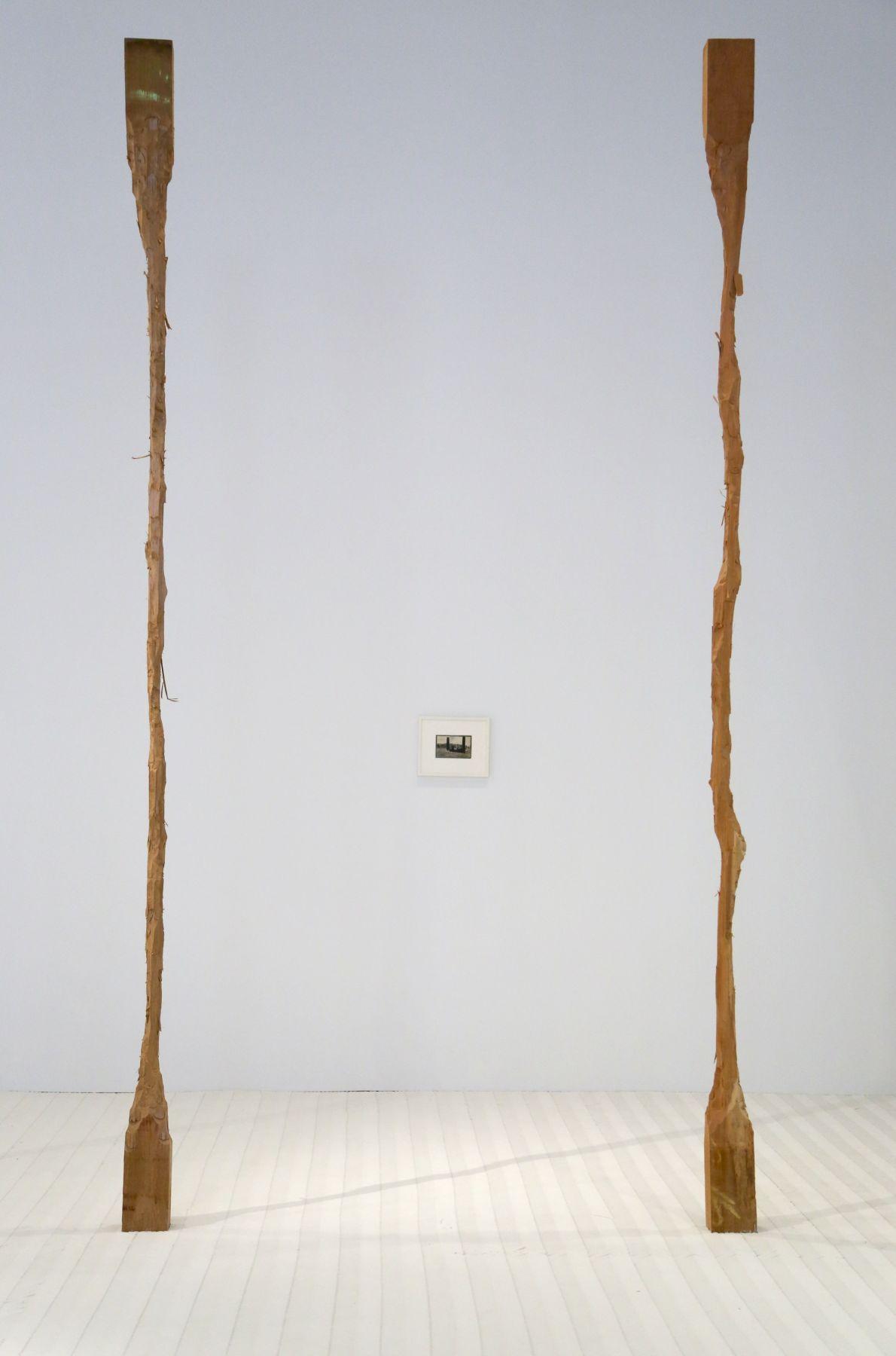 David Adamo / James Castle – installation view 5