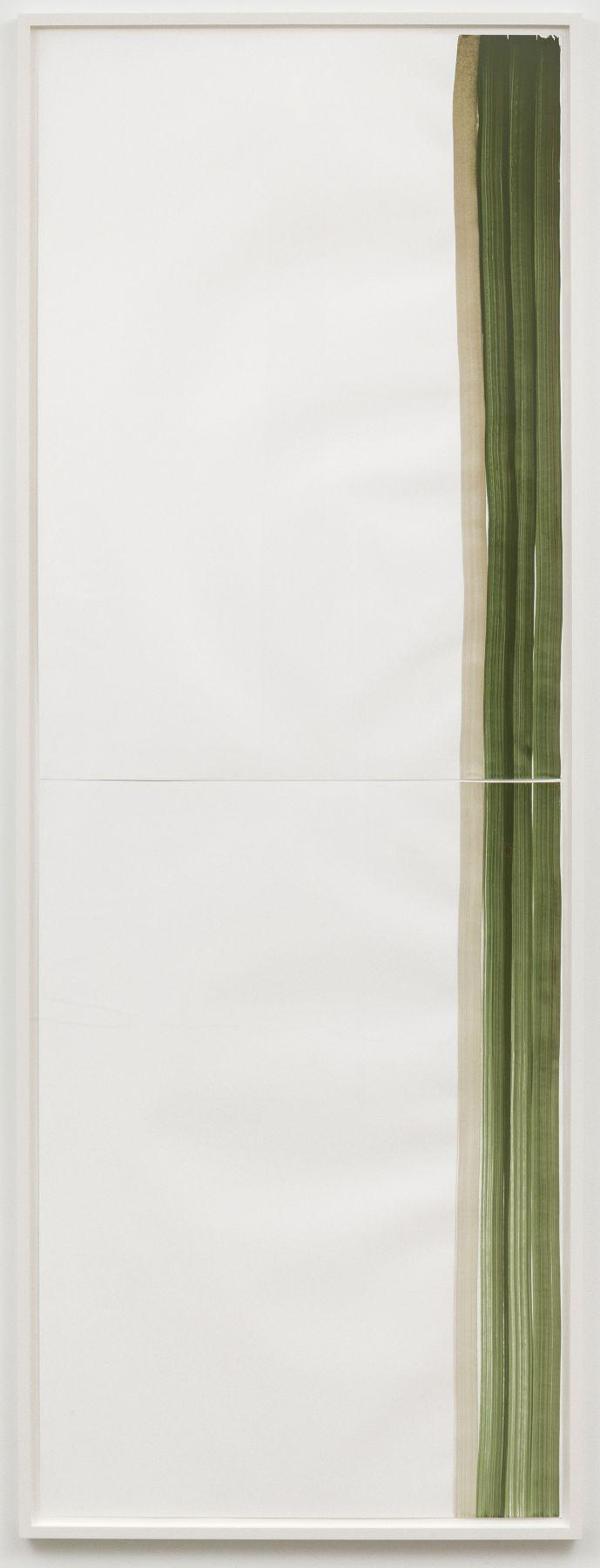 Silvia Bächli, Mantel Nr 30