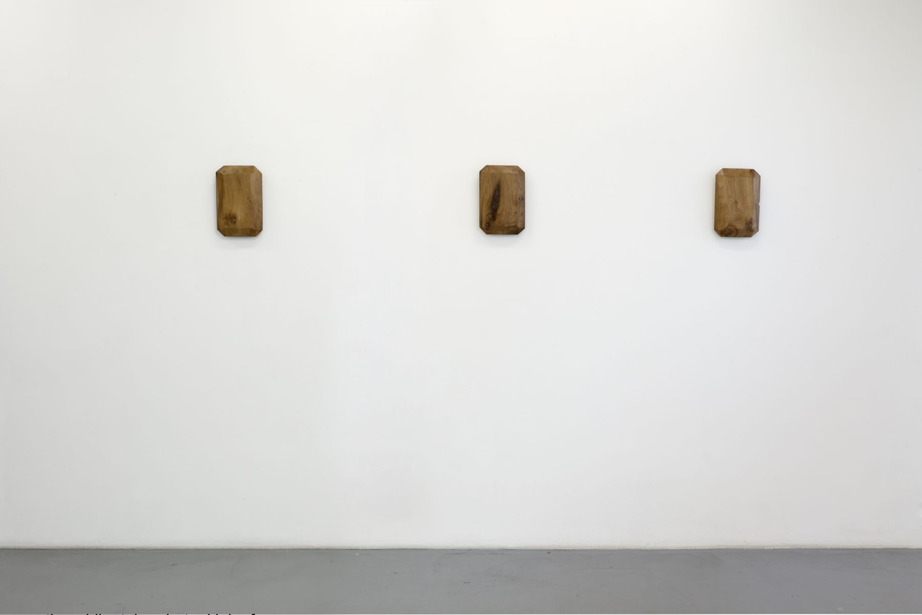 Lucy Skaer: Blanks and Ballast– installation view 5