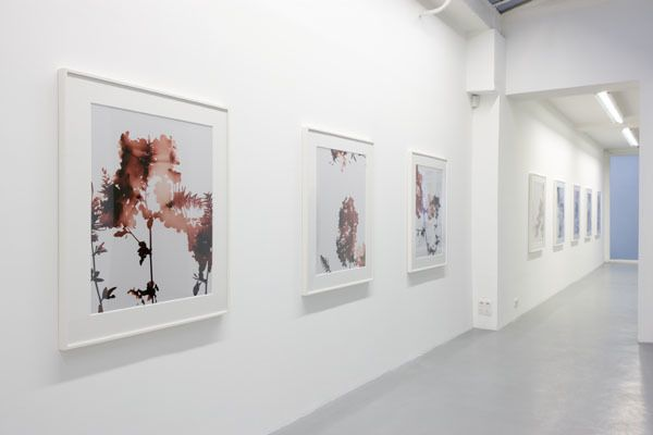 James Welling– installation view 8
