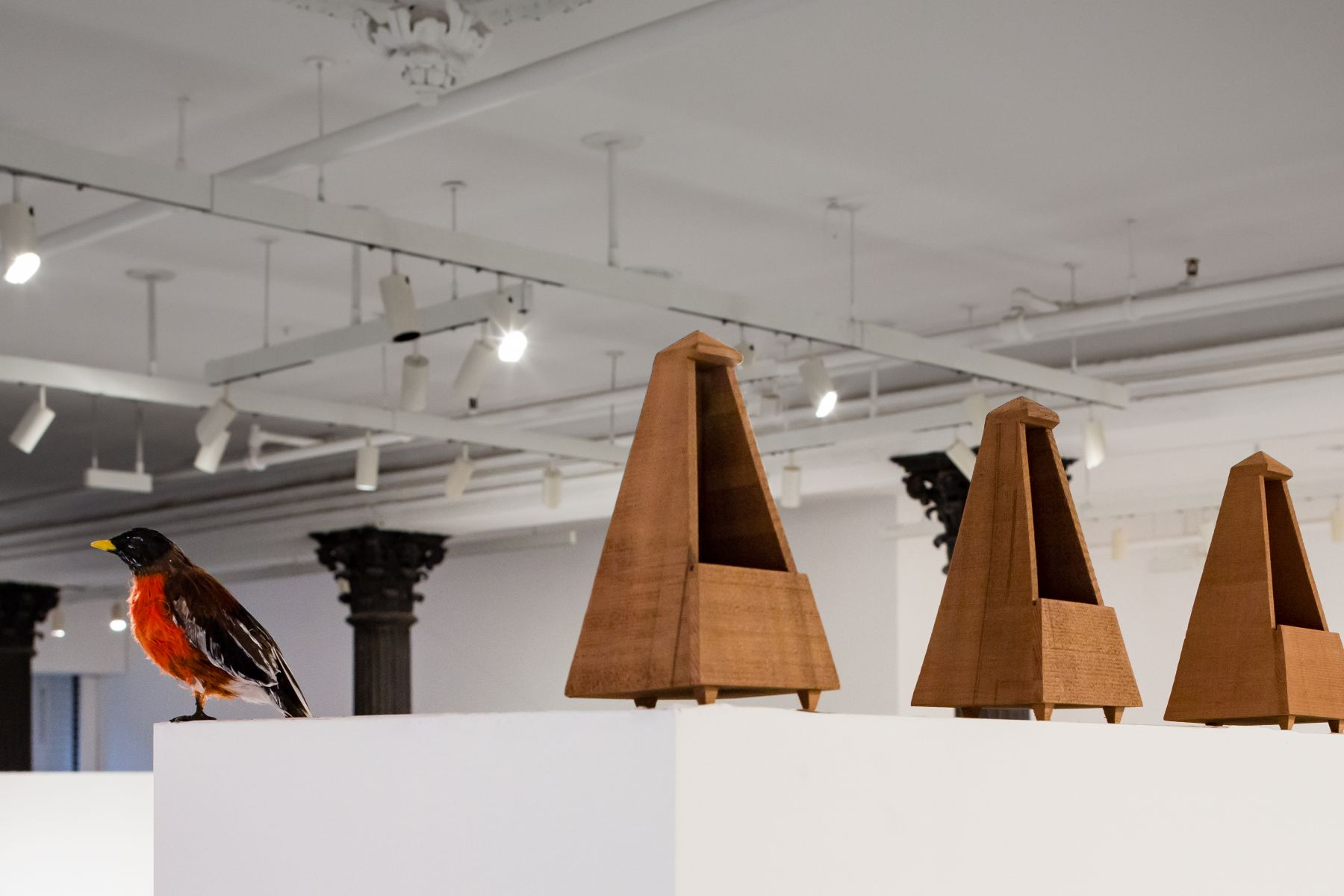 David Adamo, Peter Freeman, Inc., New York