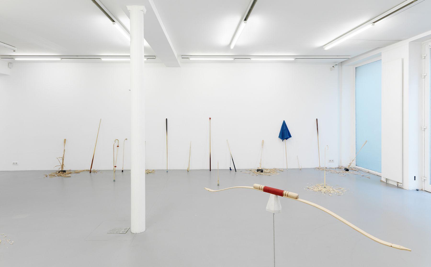 Ania Soliman -David Adamo, Galerie Nelson-Freeman, Paris.