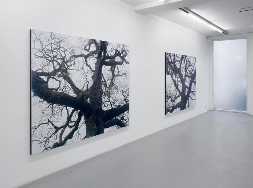 Eric Poitevin– installation view 3