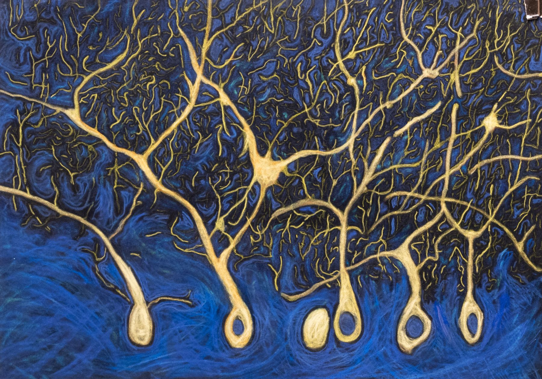 Jody Rasch, Thought - Neurons