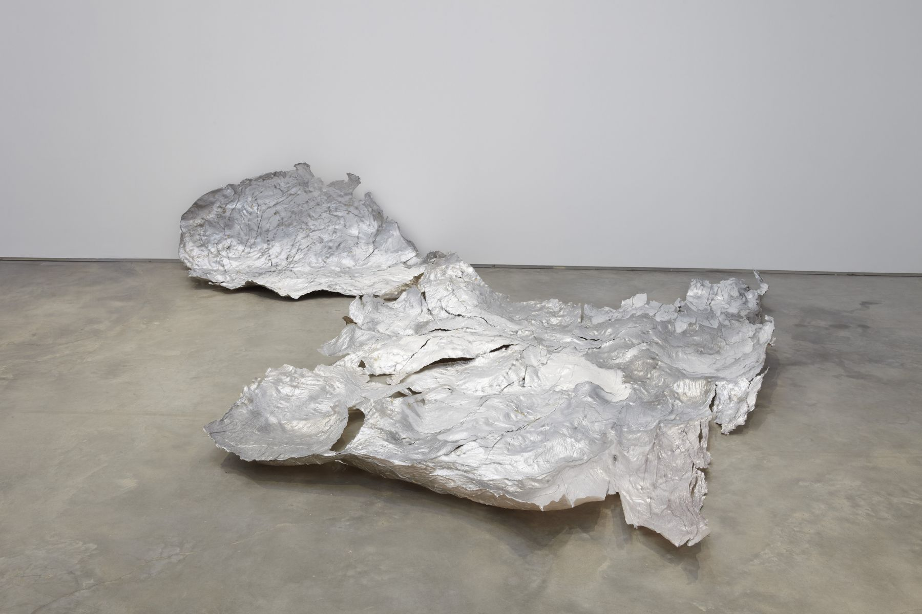 Molting, 2010, Gelatin and pigment