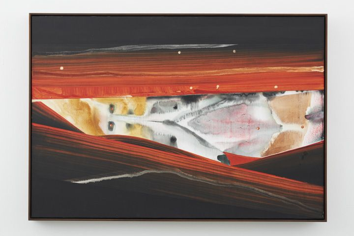 Jonah in the belly of the Whale, 2012, Water dispersed pigments, dye and acrylic on linen