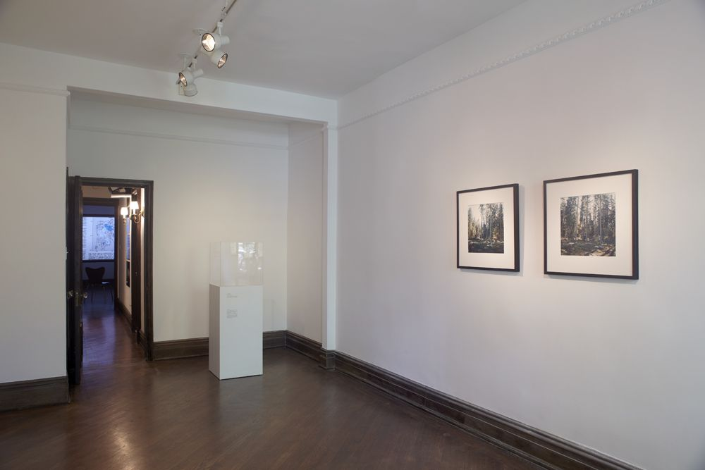 The Nature of Disappearance: Part II(Installation view), Marianne Boesky Gallery, Uptown, 2012