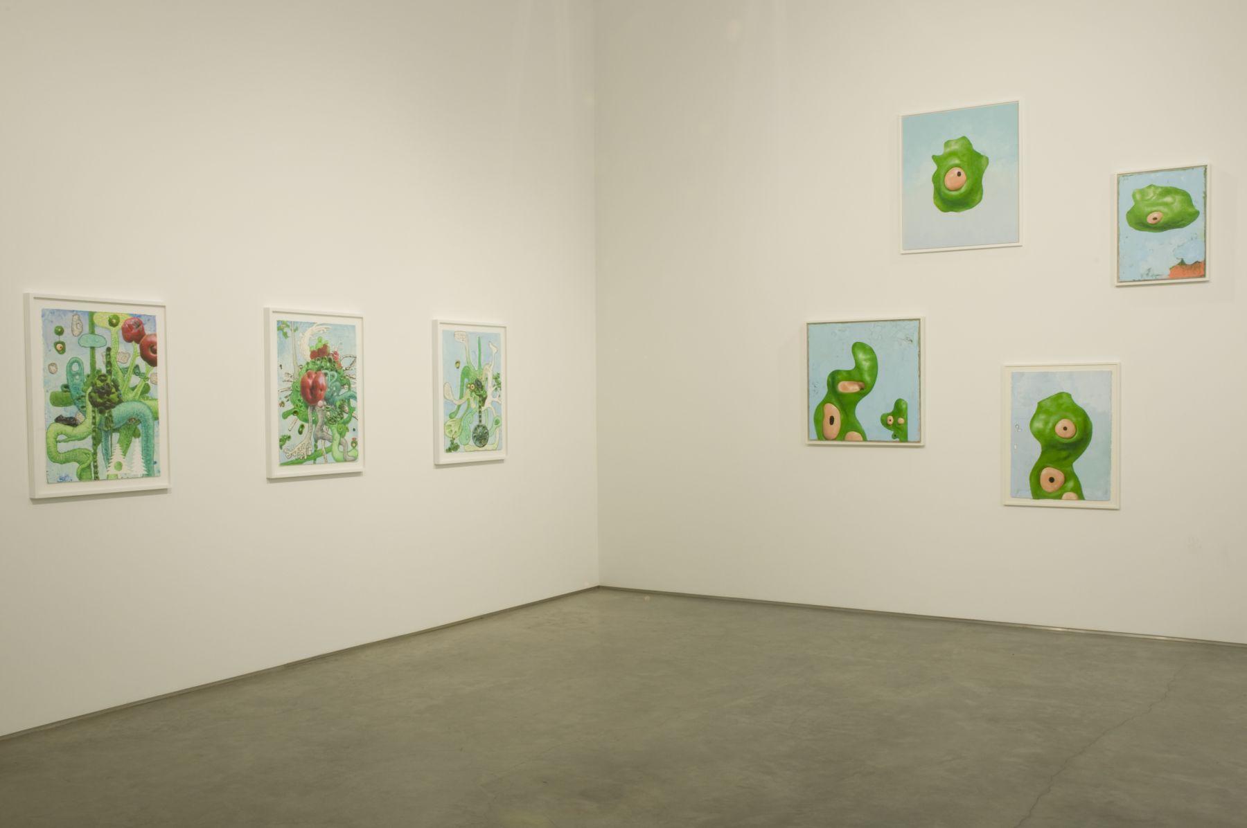 Installation View, Marianne Boesky Gallery, 2008