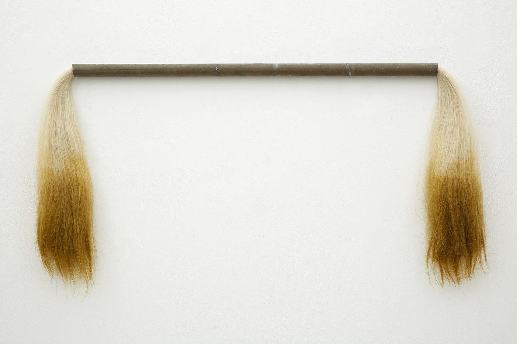 a horse hair sculpture by jay heikes an artist from minneapolis minnesota
