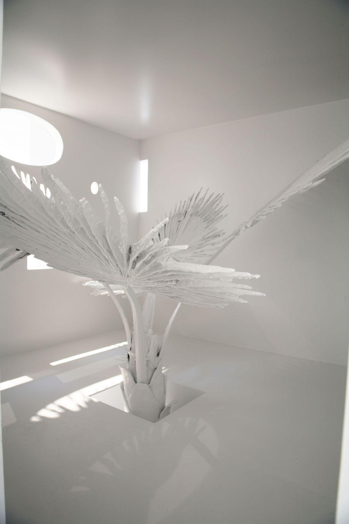 white palm leaf by liz craft