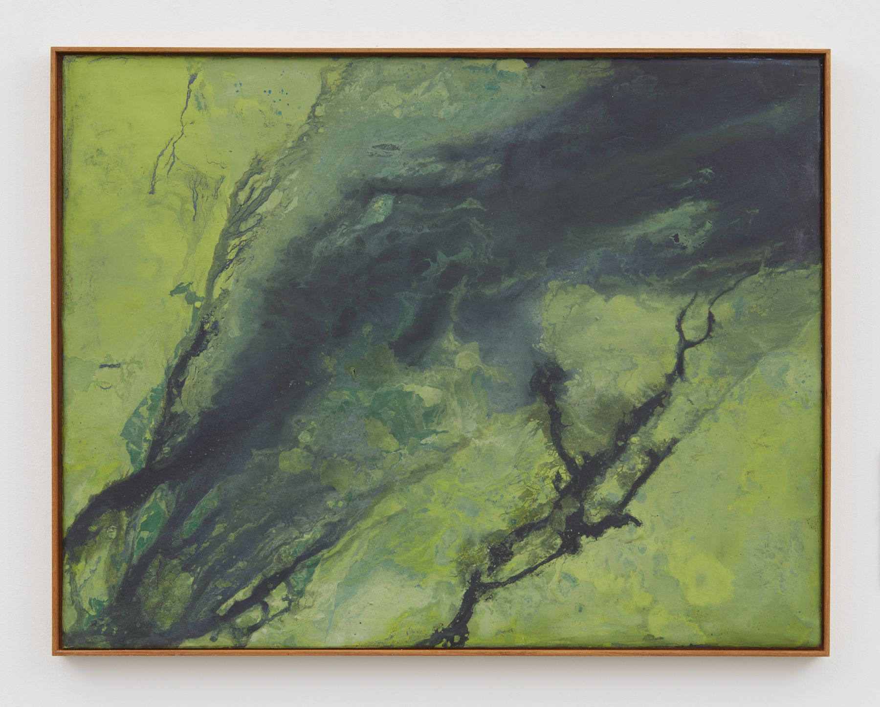 a fresco of a sea from overhead by thiago rocha pitta showing bacteria on the water