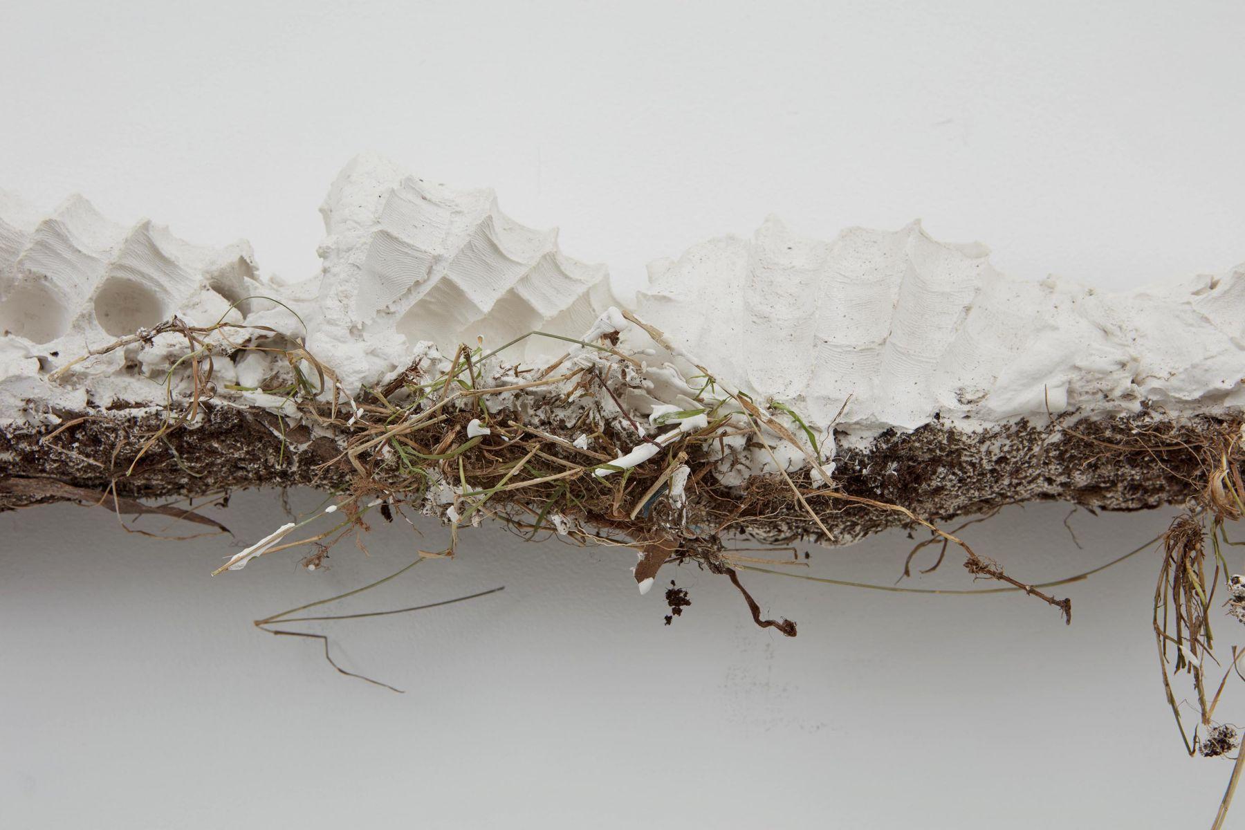 detail of a work of art by German contemporary artist Bjorn Braun