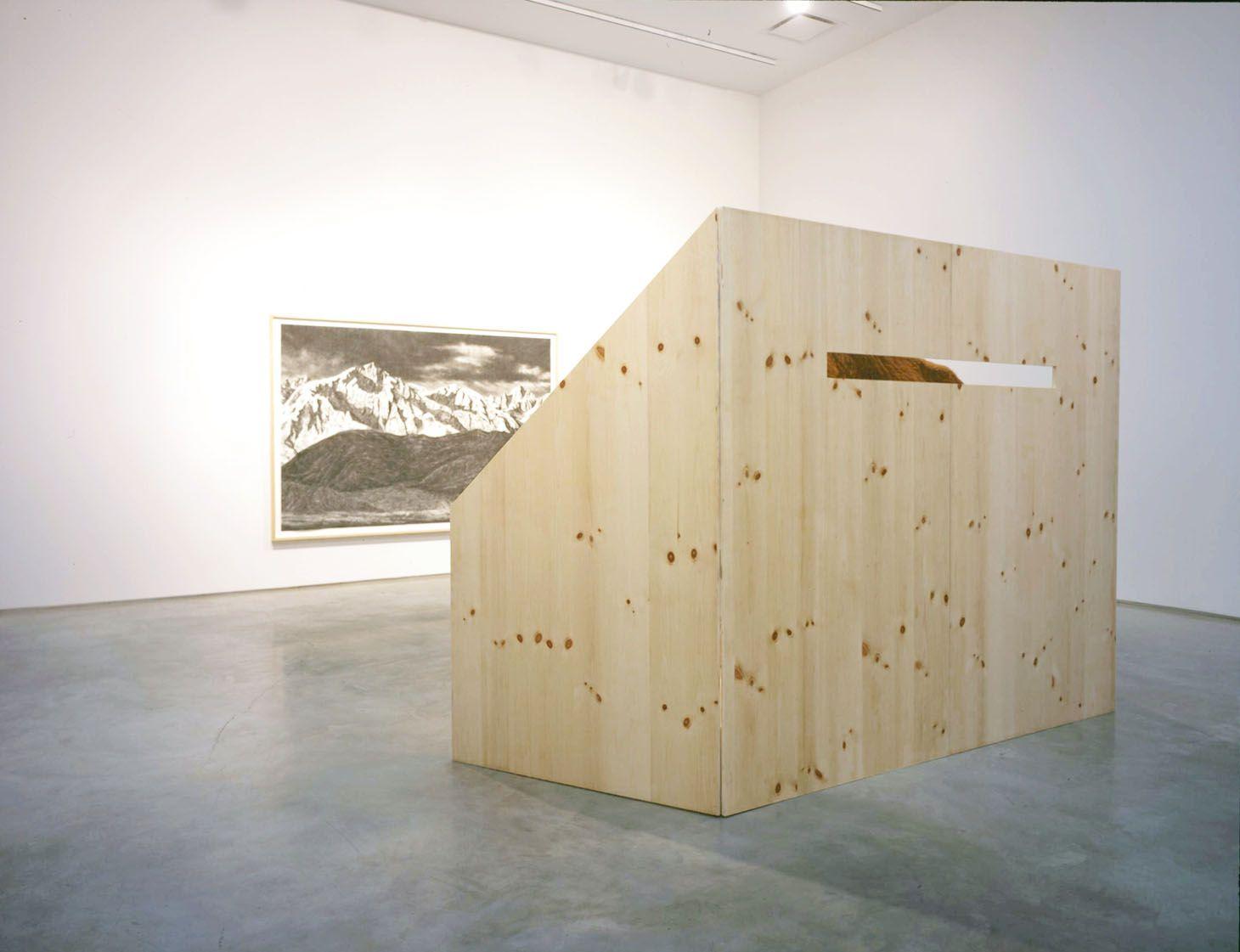 Undying Glare, 2007