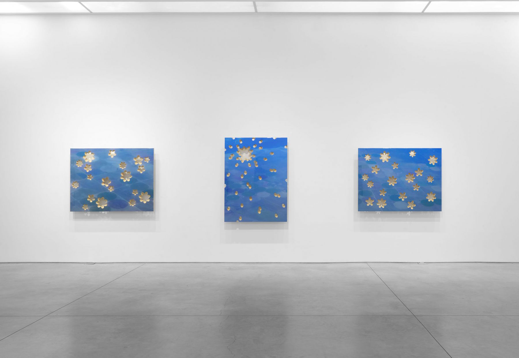 any fallow field(Installation View), Boesky East, 2016