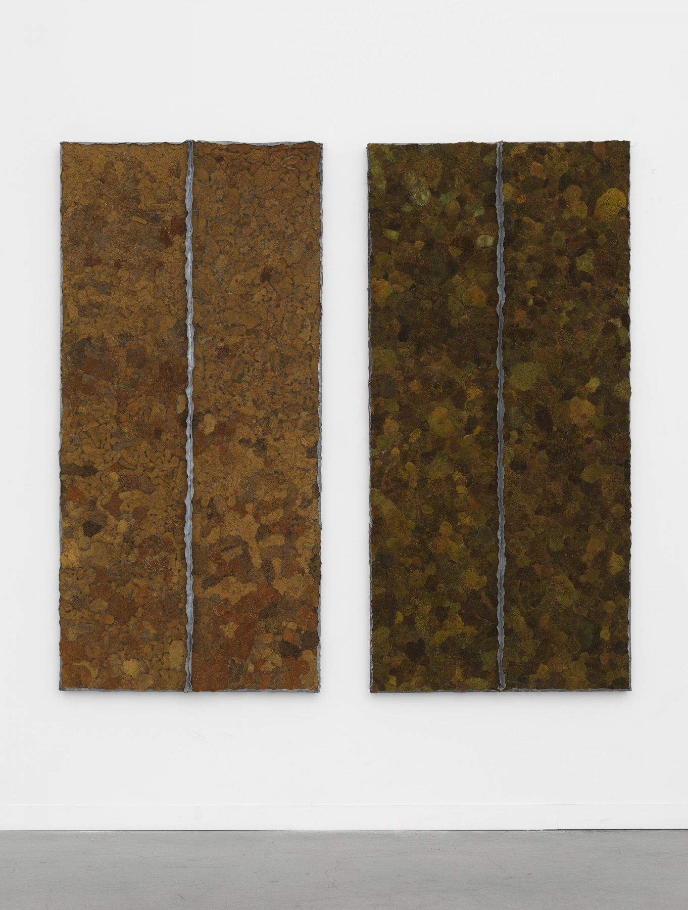 diptych made of dry moss by pier paolo calzolari
