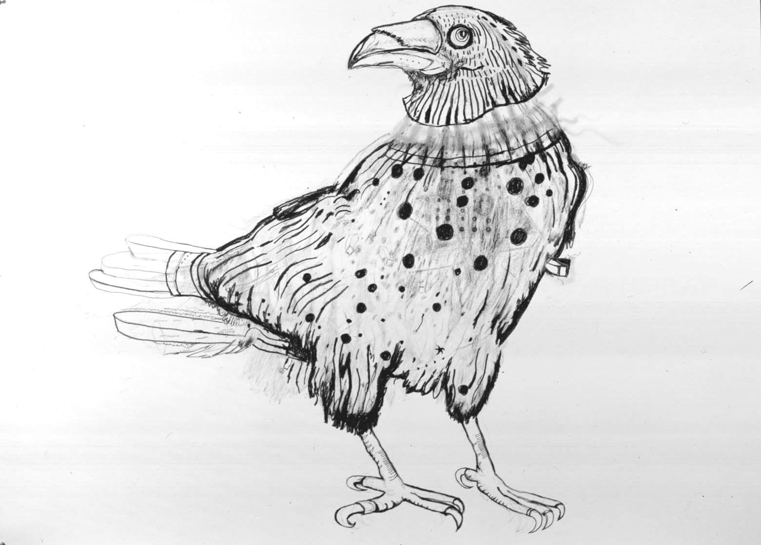 Bird, 2004, Graphite on paper