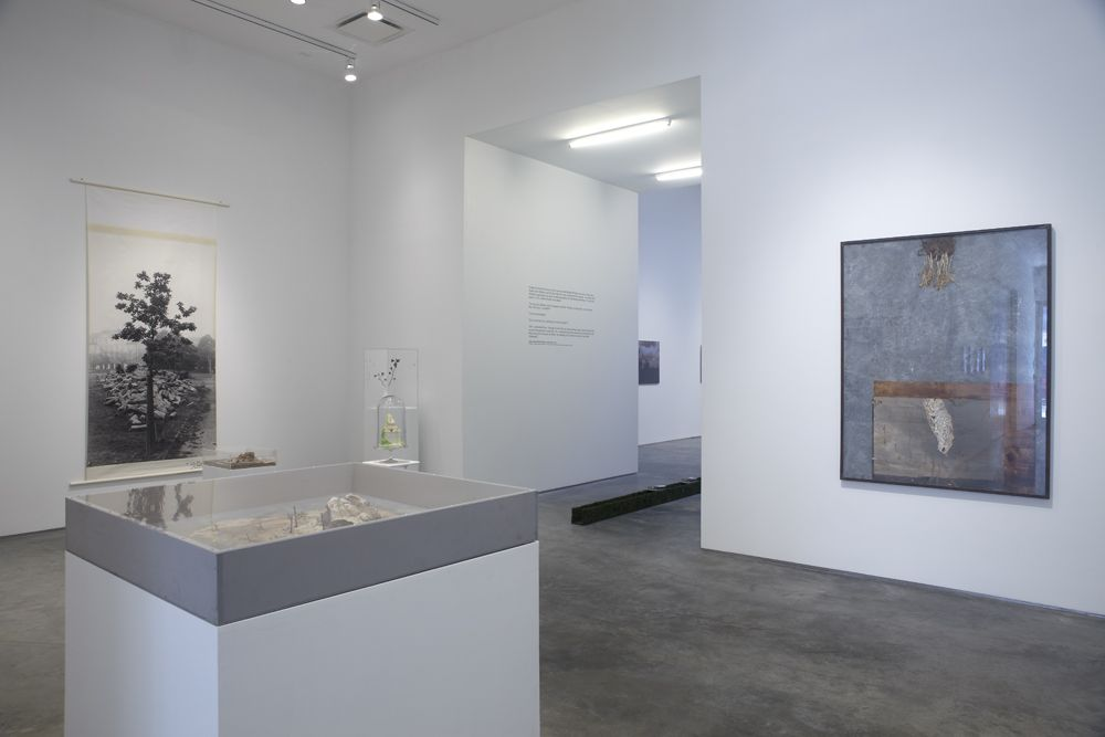 The Nature of Disappearance: Part I(Installation view), Marianne Boesky Gallery, 2012