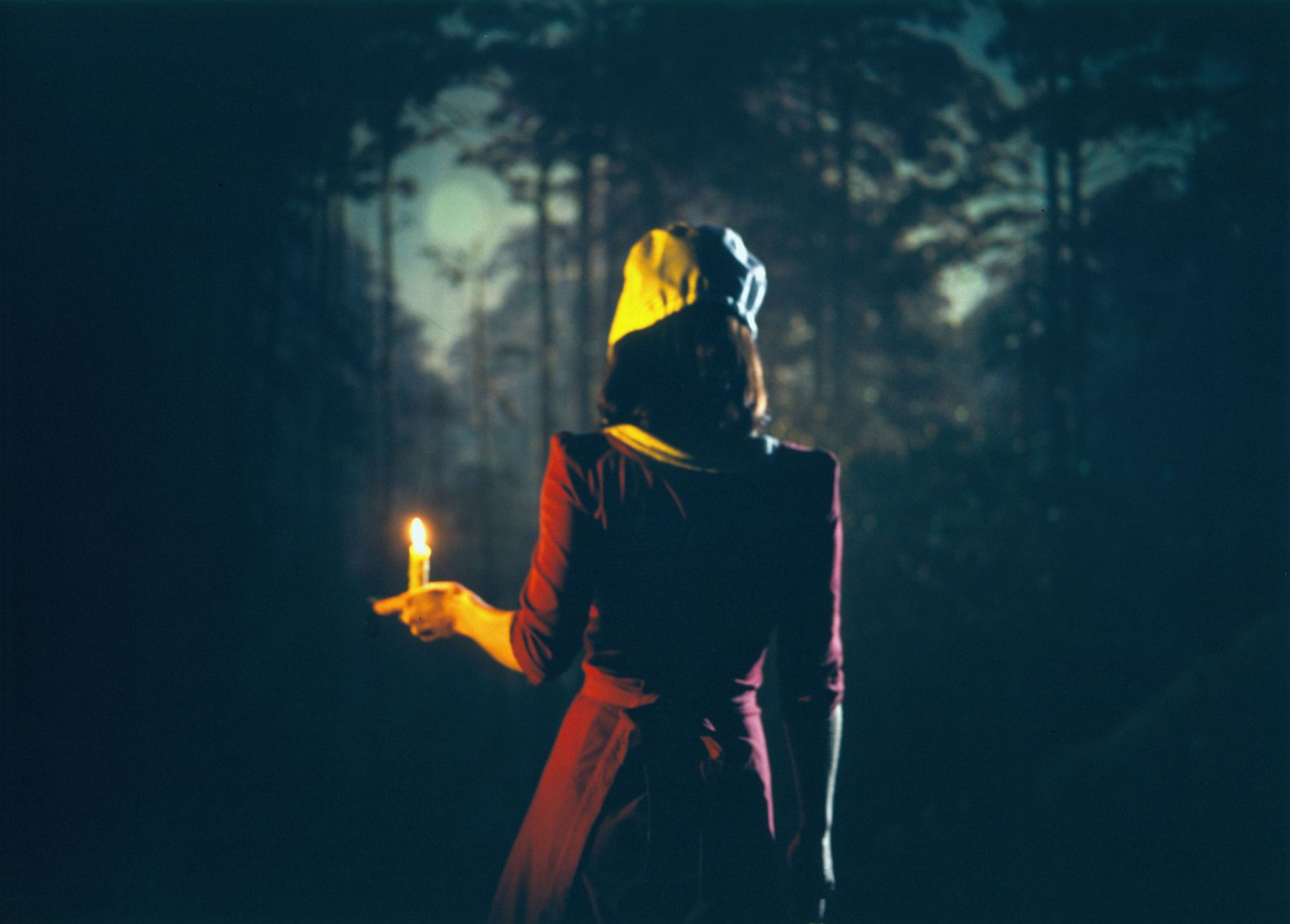a c-print photograph of a girl in the woods by sue de beer exhibited in a contemporary art gallery