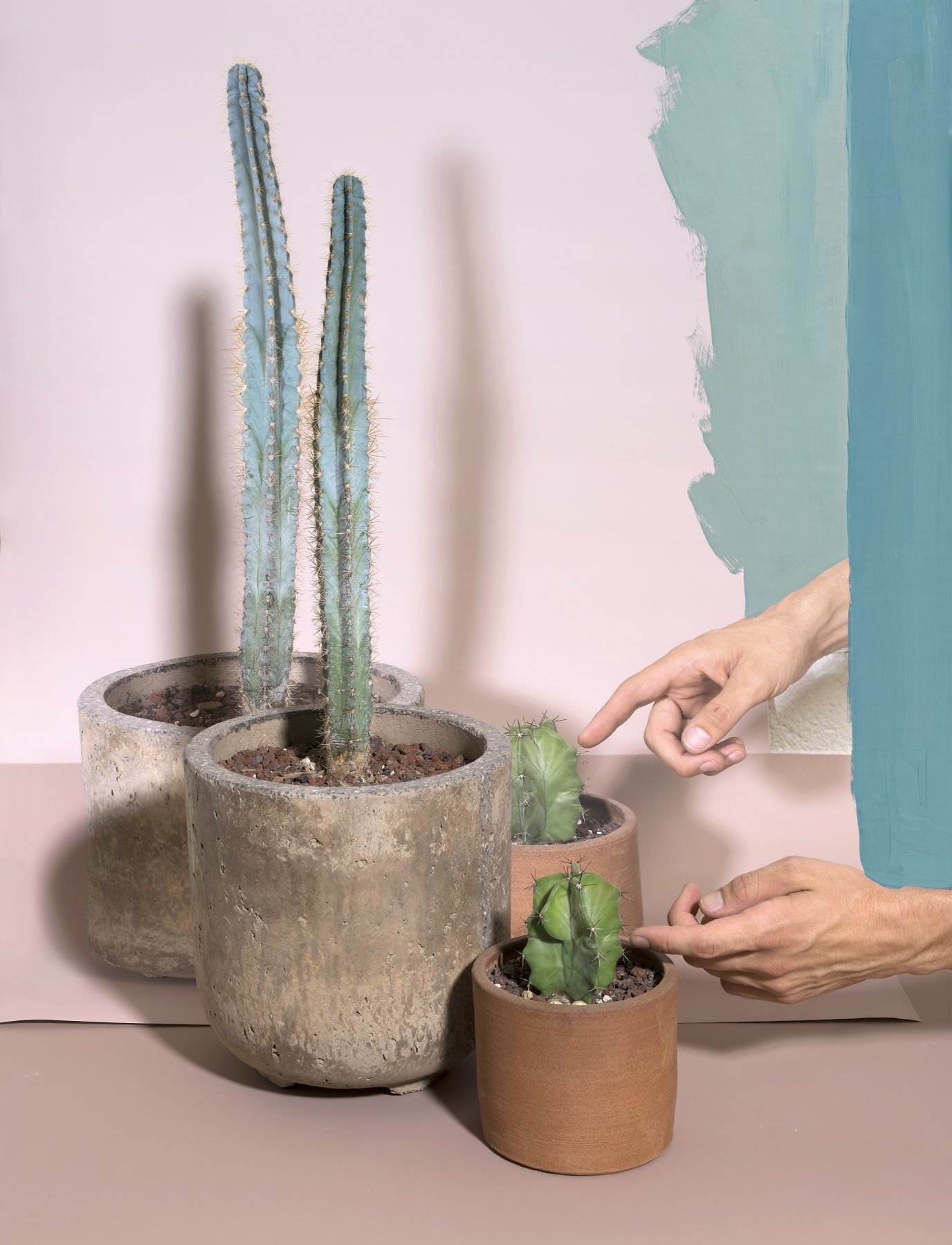 print featuring cactus and hands by the artist John Houck