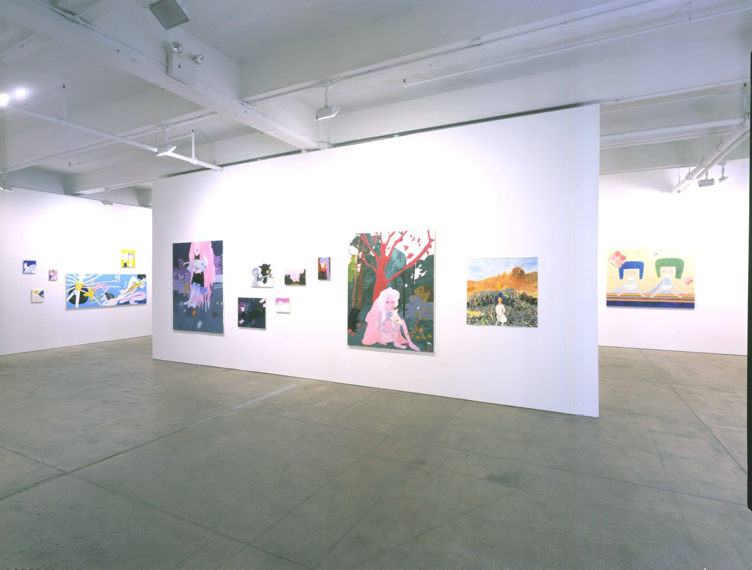 Tokyo Girls Bravo (Installation View), Marianne Boesky Gallery, 2004