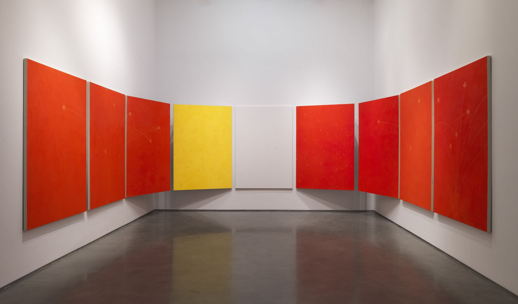 minimal color paintings by the Italian artist Pier Paolo Calzolari