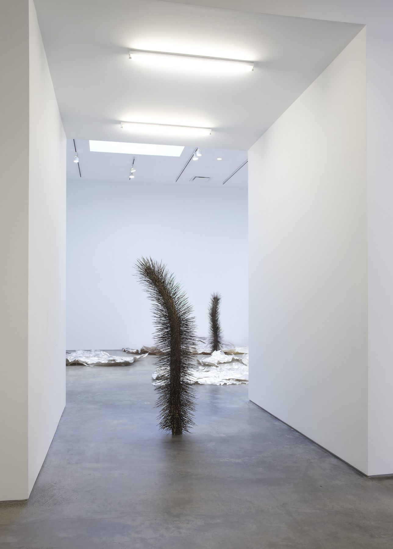 Intimate Life (Installation View), Marianne Boesky Gallery, 2010